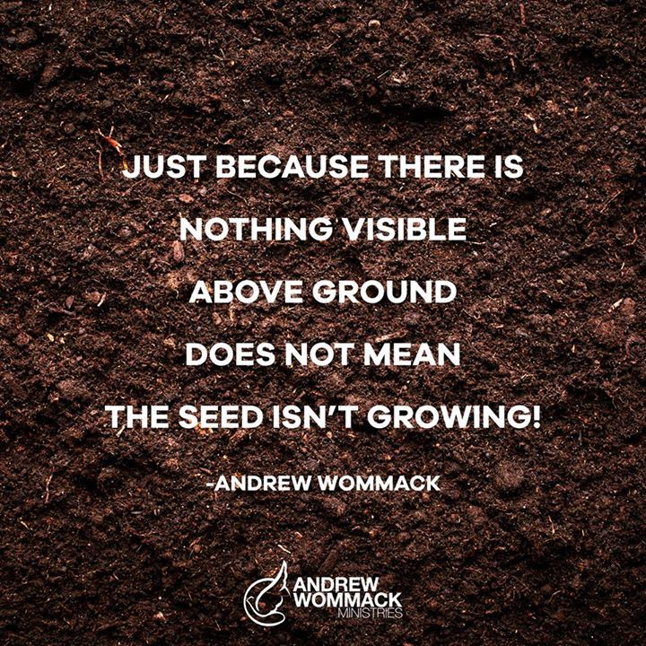 Andrew Wommack Ministries                                                                                                                                                                                 More