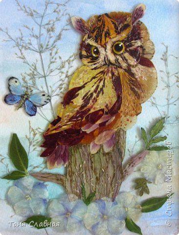 Картина панно рисунок Аппликация Аппликация из сухих лепестков на стекле Три панно с птицами Клей Листья Стекло Трава фото 1
