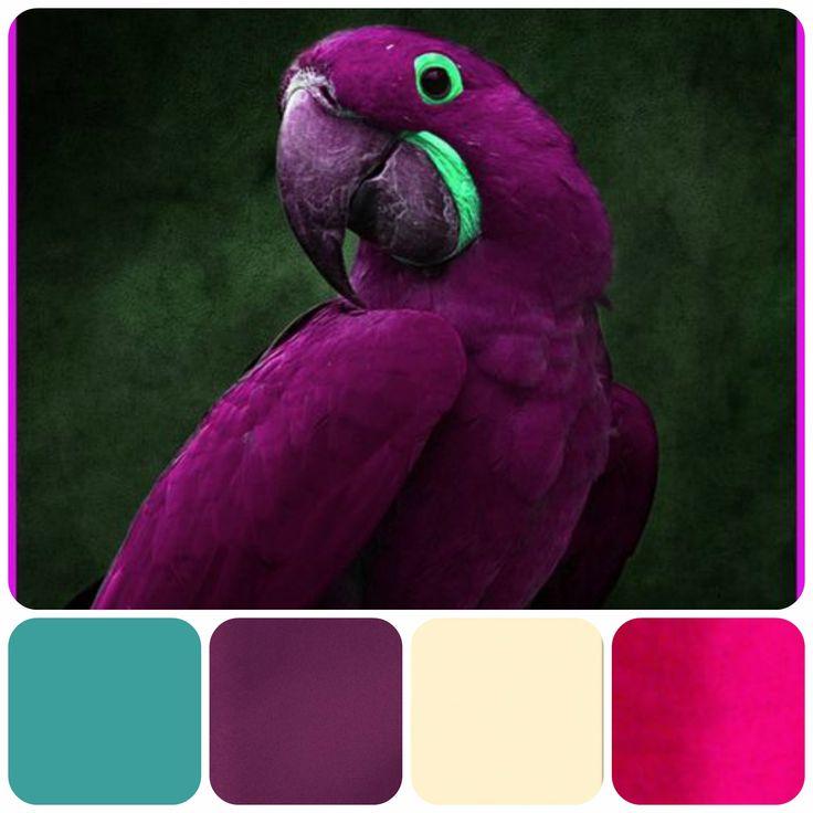 Purple Colour Scheme: 25+ Best Ideas About Deep Purple Bedrooms On Pinterest