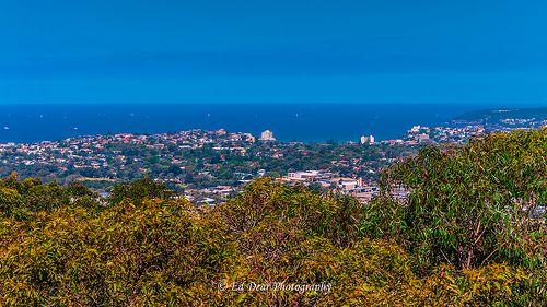 Beacon Hill  Oct 2013-16