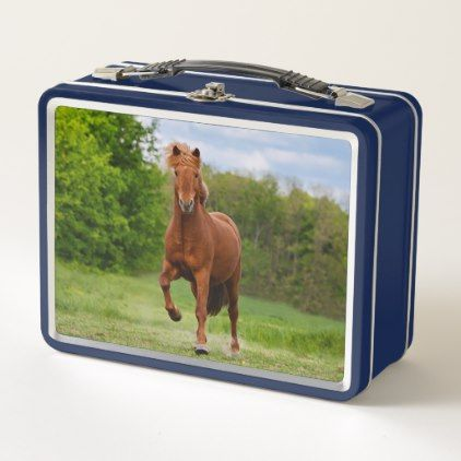 Icelandic Pony at a Tölt Funny Photo Horse Lovers Metal Lunch Box - home gifts cool custom diy cyo