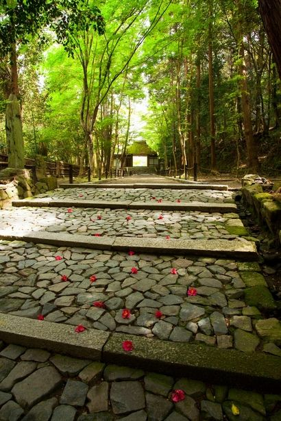 A Sando is the road approaching either a Shinto shrine or a Buddhist temple of Japan.