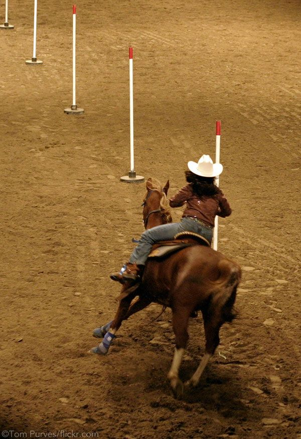 Get+your+horse+started+in+pole+bending+with+advice+from+a+pro.