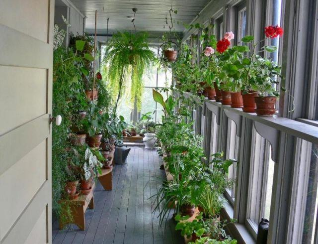 42 besten Wintergarten Bilder auf Pinterest | Wintergarten, Gärten ...