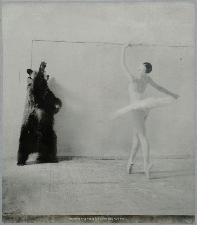 Григорий Майофис. Со временем можно и медведя научить танцевать, из серии «Пословицы»
