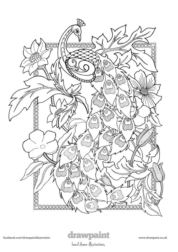 free coloring pages com printable - 78 best free colouring pages birds butterflies images