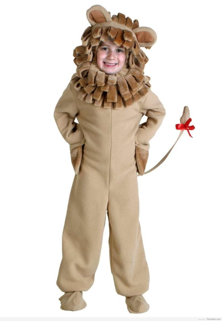 http://timykids.com/lion-halloween-costumes-for-kids.html
