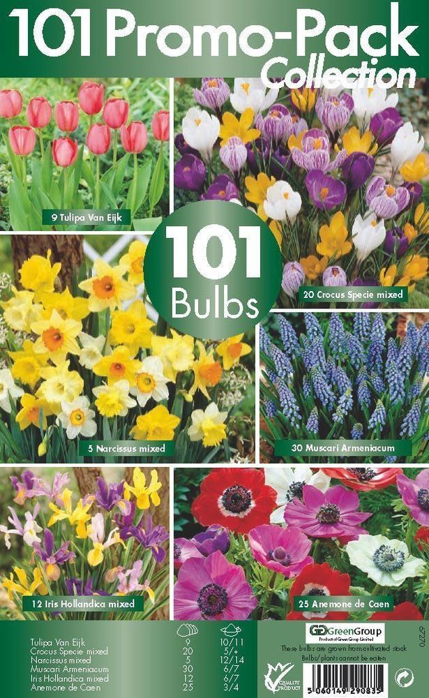Spring Flower Bulb Collection 6 Flowering Variety Pack Of 101 Bulb Flower Garden