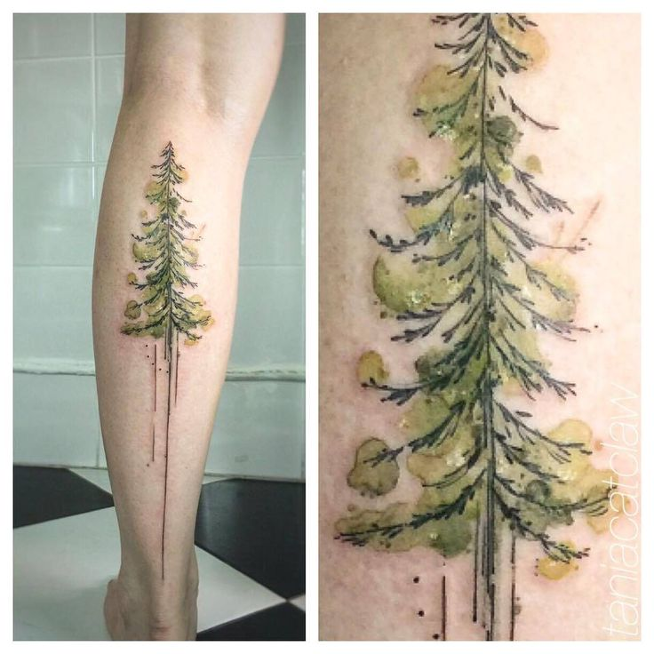 Watercolor style pine tree tattoo on the left calf. Tattoo artist: Tania Catclaw