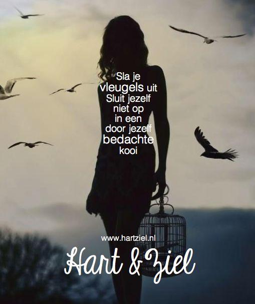 #kooi #leven #vliegen #vleugels #hartziel #quote #citaat #leven #mindstyle #gelukkig #geluk #blogs