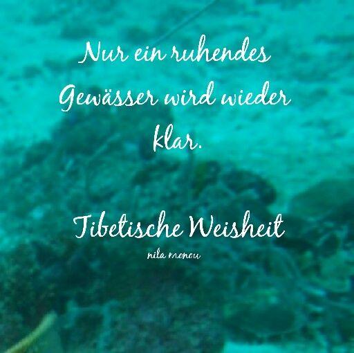 #tibetischeweisheit #buddhistischeweisheit #zitate #ruhendesgewässerwirdwiederklar #nilamonou