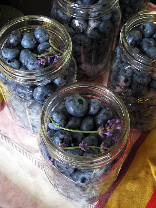 Canning Blueberries: Canning Fresh, Canningblueberriessuvir 05, Cans Blueberries Recipes, Lavender Blueberries, Canning Blueberries Suvir 05, Vanilla Beans, Blueberries Tutorials, Fresh Blueberries, Canning Fruit