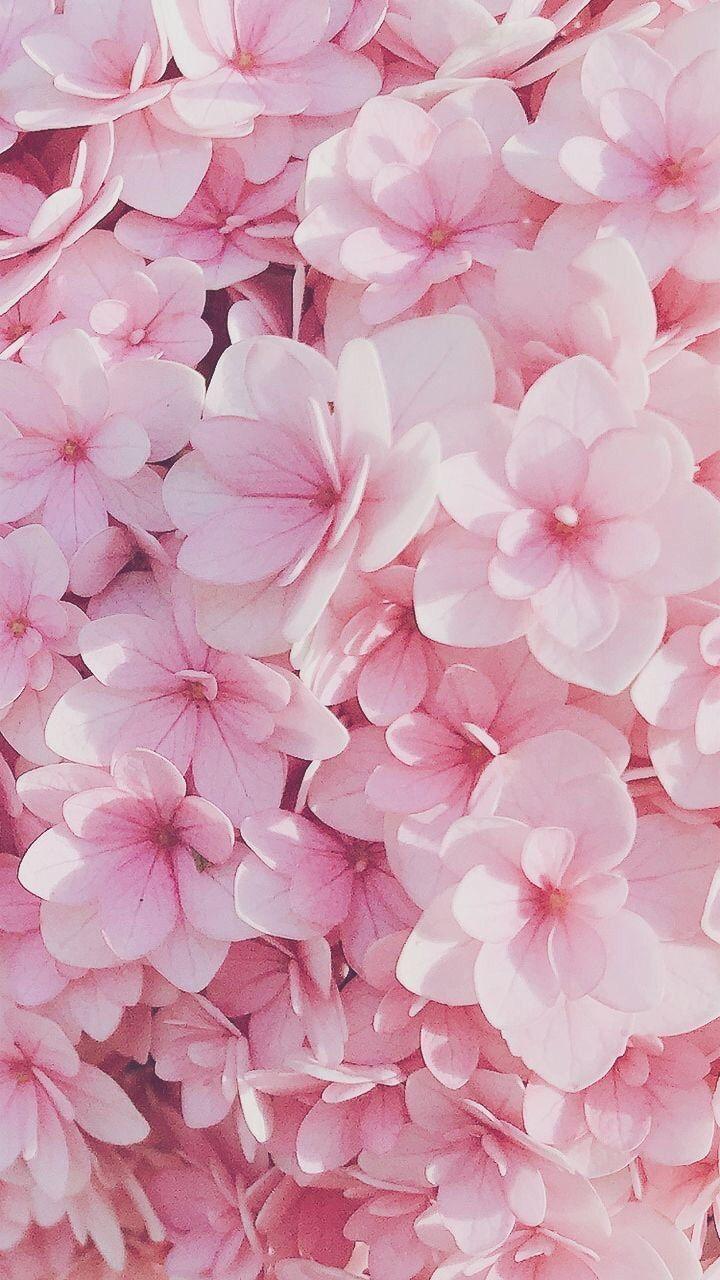 Loading Pink Flowers Wallpaper Flower Iphone Wallpaper Flowery Wallpaper