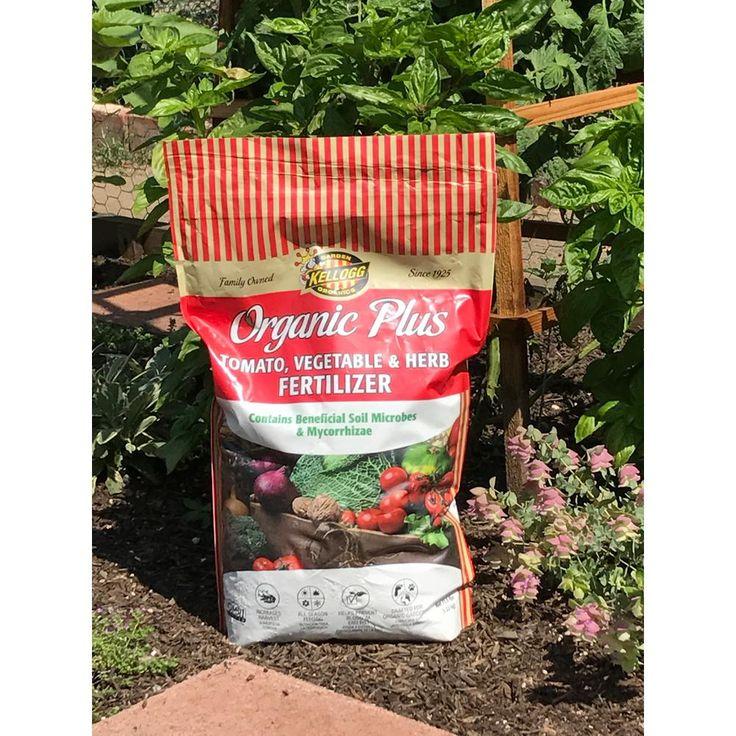 Kellogg Garden Organics 11.5 lb. Organic Tomato Vegetable