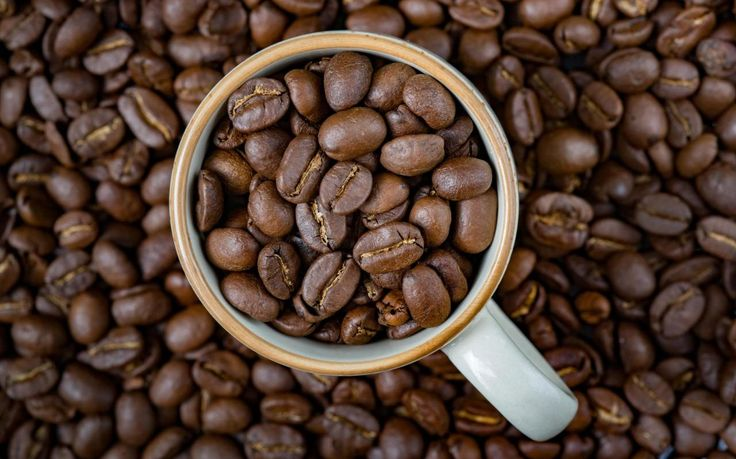 Historically, coffee has always walked a thin line between sobriety and subversion.
