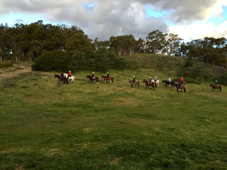 """Instagrammer @melbee1673: """"Great afternoon trail ride with Burnelee Excursions on Horseback."""" #humanbrochure"""