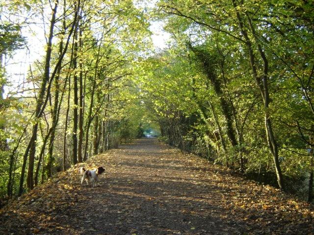 The Railway Walk, Keswick
