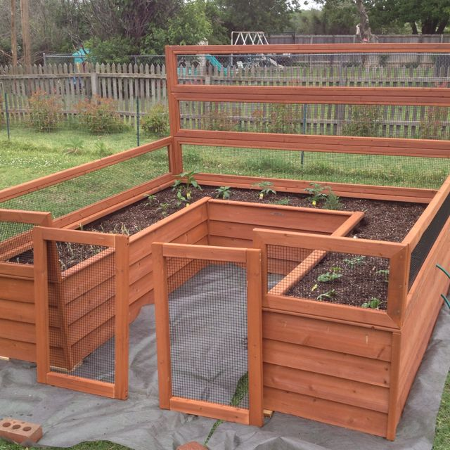 I have my garden box all put together now and the plants all planted. Tomatoes, peppers, onions, golden potatoes, cucumbers, yellow squash. Yum  I still need to hang the gates.