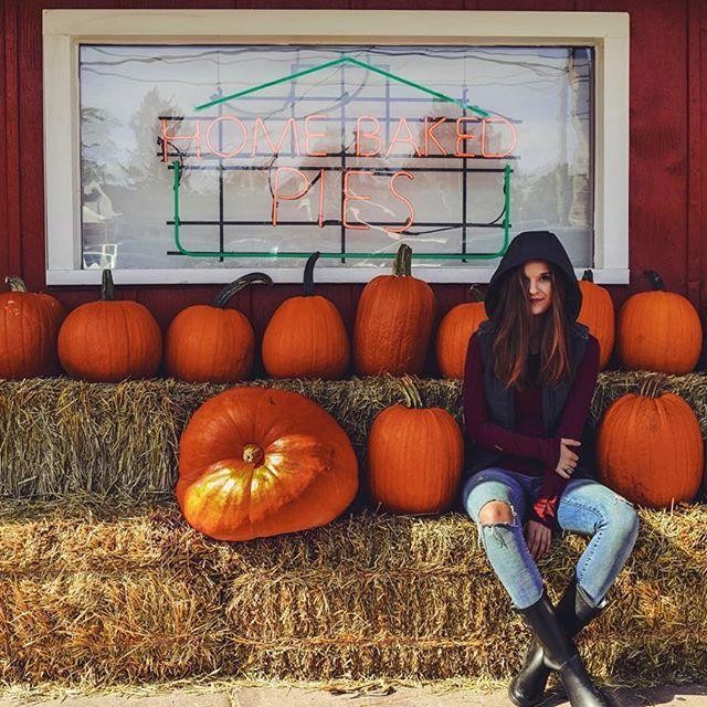 pumpkin patch photo ideas - Best 25 Pumpkin patch photography ideas on Pinterest