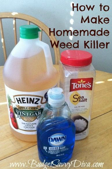 homemade weed killer. Simple to make, no harsh chemicals, and will cost less then you will pay in the store for something similar.    Mix 1/2 gallon of Apple Cider Vinegar, 1/4 c table salt and 1/2 tsp Dawn liquid dish soap and pour into a spray bottle. Then just spray weeds thoroughly.