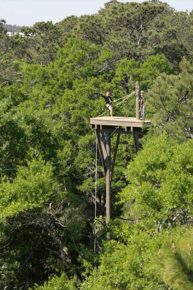 32 Best Destination Hilton Head South Carolina Images On Pinterest Hilton Head South