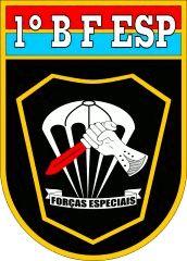 1º Batalhão de Forças Especiais