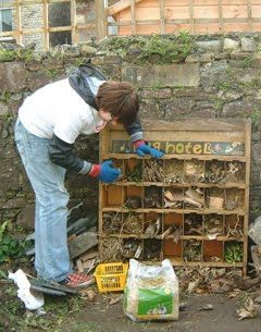 """how to create a """"bug hotel"""" - great for a nature center, school, or even your own backyard!"""