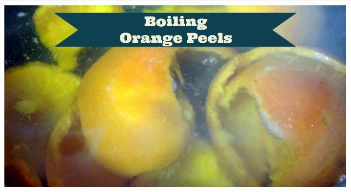 Boiling Orange Peels for a Natural Air Freshener Recipe