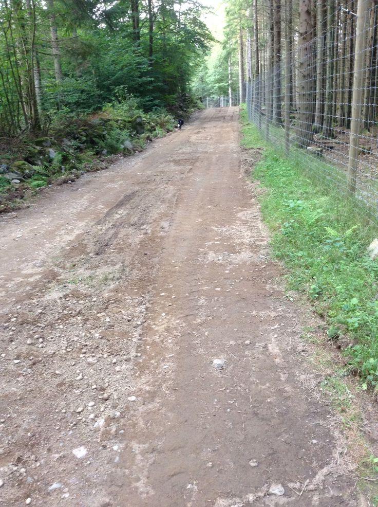 Promenadvägar längs hägnet. Även för rullstol och rullator!