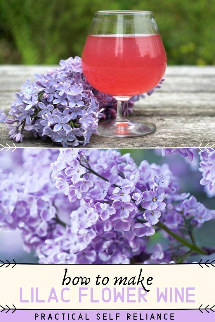 Lilac Wine Recipe Wine Blueberry Water Peach Wine