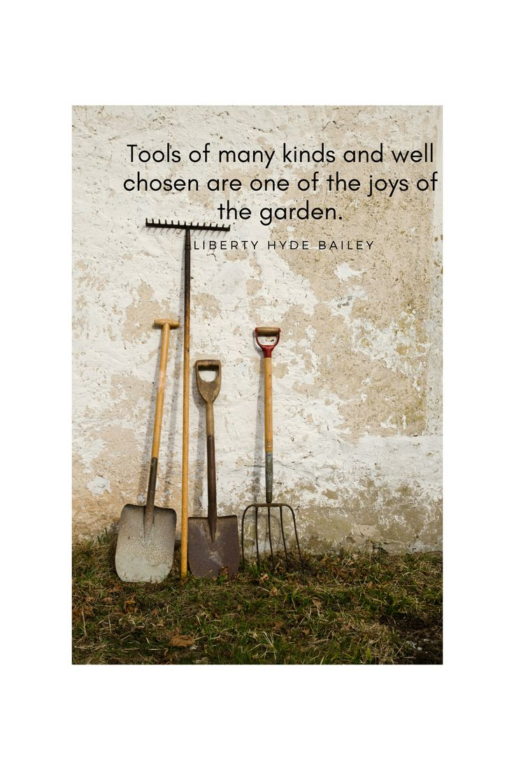 What are the essential tools for the garden? Find out.