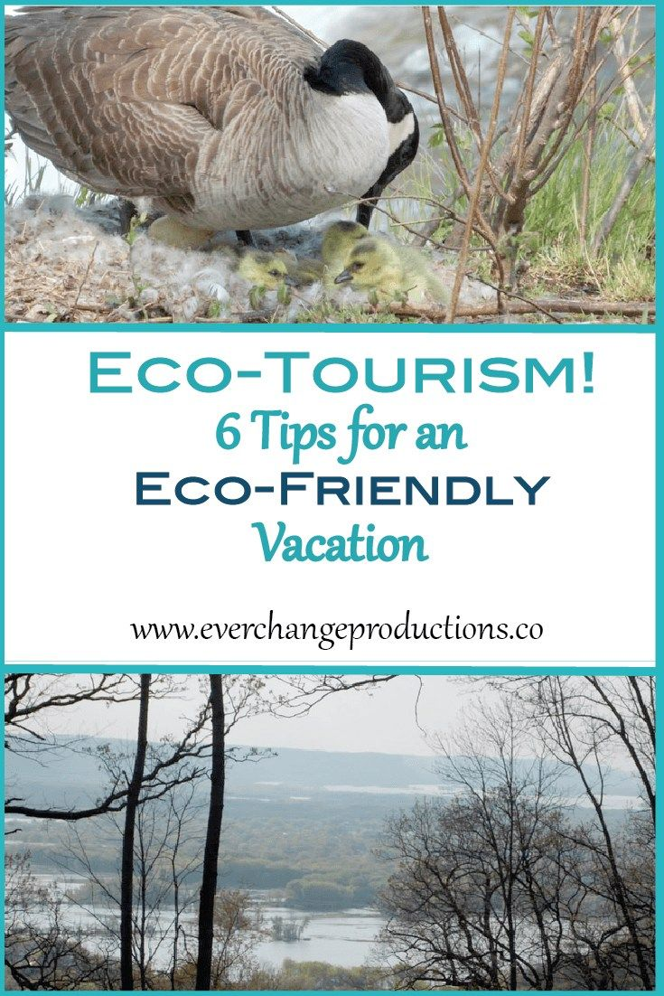 Eco-tourism is a great way to support our planet and the people on it, while still getting to travel and experience all our beautiful world has to offer. Responsible travel is essential to protect nature for future generations. It takes all of us doing our part.