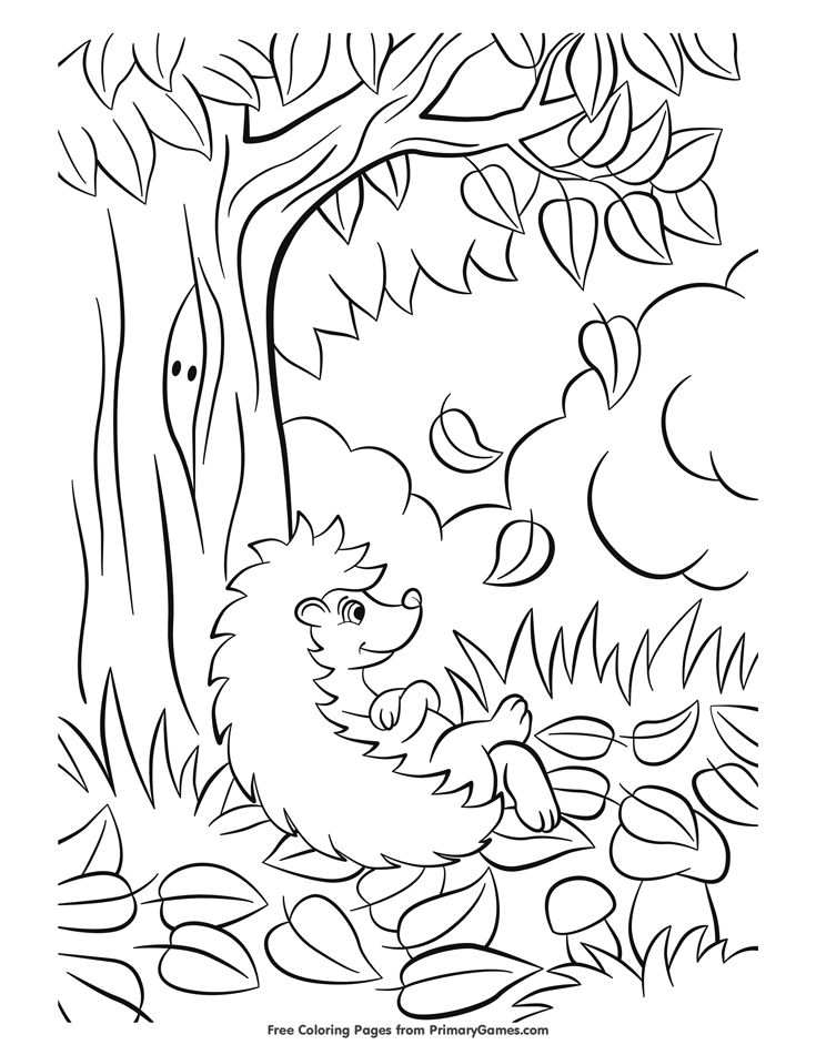 Fall Coloring Page Hedgehog With Leaves