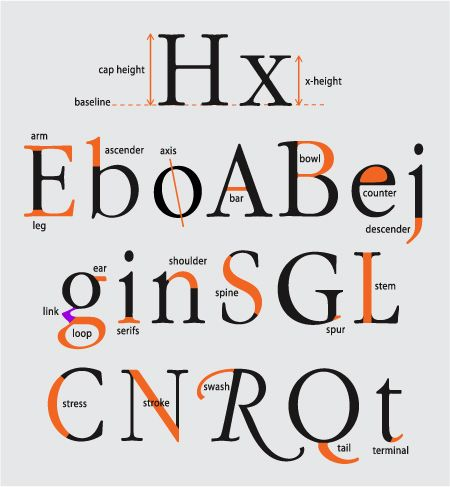 """You've known the names of letters and numbers since you were a little kid. But did you realize that every part of those characters have names, too? Knowing this terminology will help you better understand typefaces and communicate about design."""