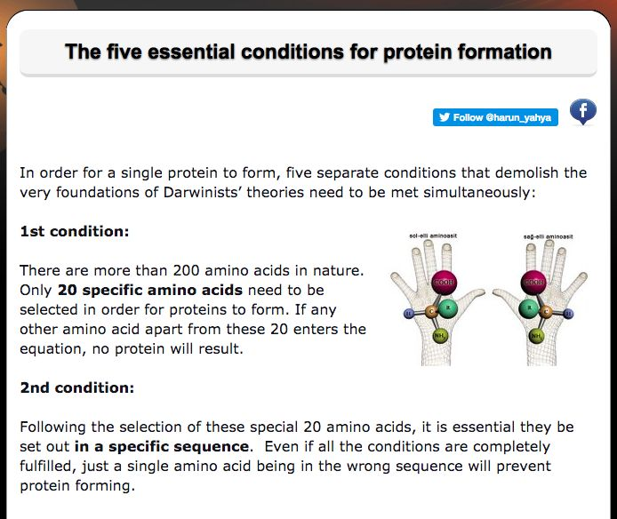The five essential conditions for protein formation