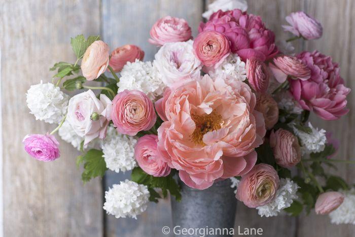David Austin Roses and Peonies | ... peonies, mixed with ranunculus, David…
