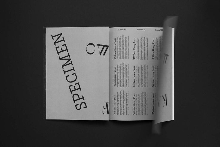 Karloff type specimen - Hungry studio