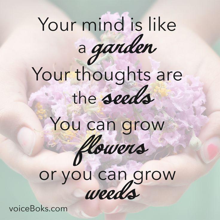 How do you grow your garden?