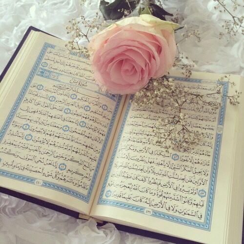 Holy Qur'an <3