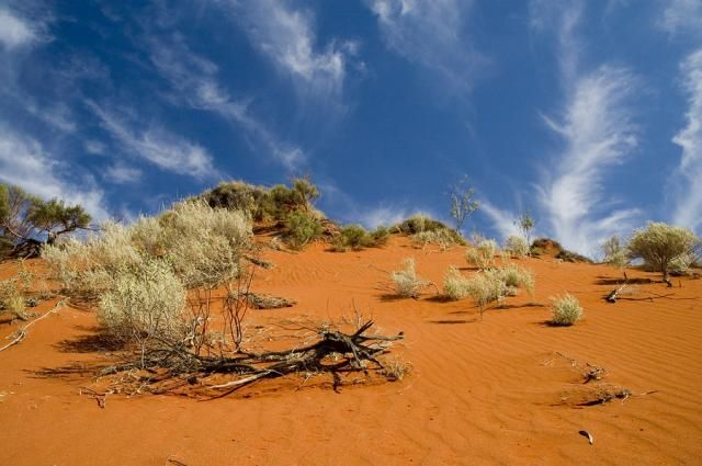 Australian outback | outback australiano