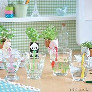 These self-watering animal plants ($15). | 27 Absurdly Cute Gifts That No One Could Resist