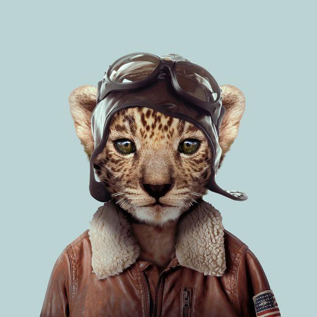 """Série """"Zoo portraits"""" de Yago Partal."""