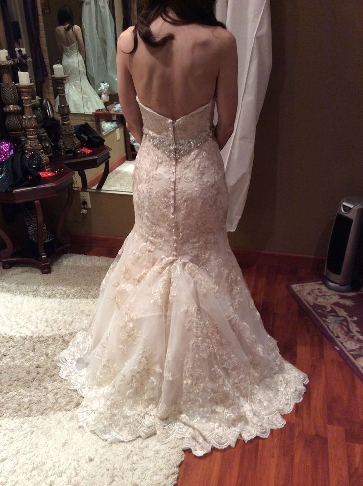 Best 25 Wedding dress bustle ideas on Pinterest  Jim hjelm wedding dresses Bridal dress