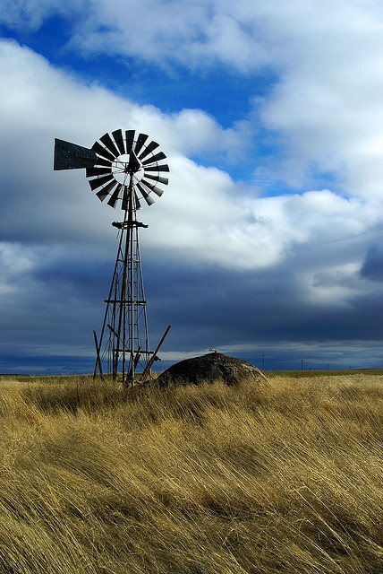 Love old windmills if I ever have some land I would love to find one like this to put on it!