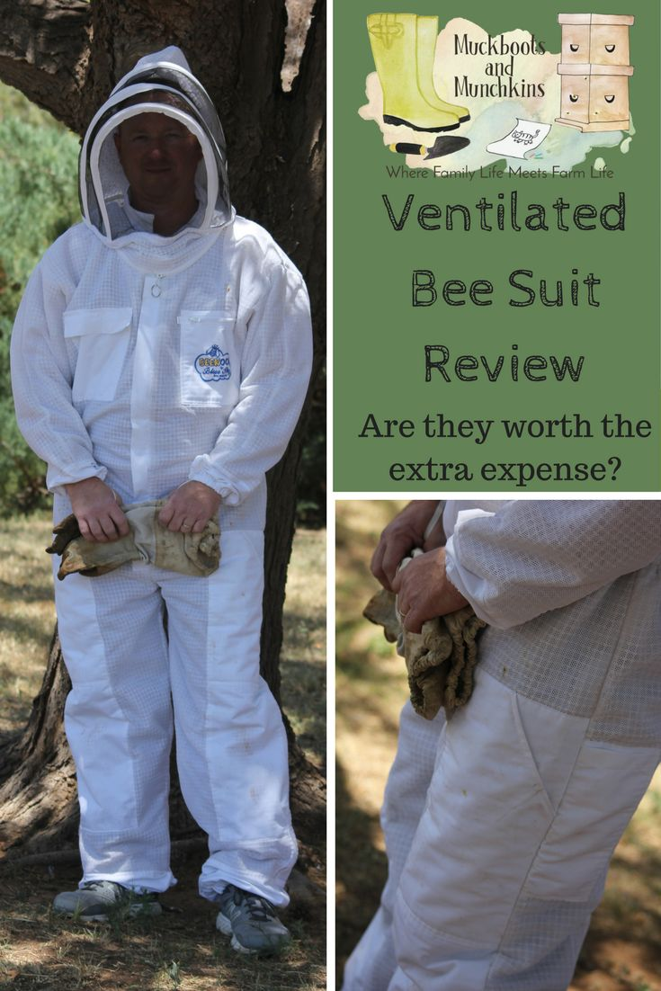 With so many choice, it can be hard to choose a quality bee suit for the right price. Whether you are a beginner beekeeper, or experienced, and looking for an upgrade, let us help you find a suit that is right for you!