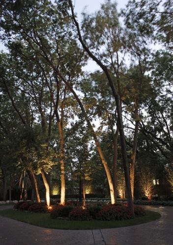 Landscape Lighting - traditional - landscape - omaha - McKay Landscape Lighting