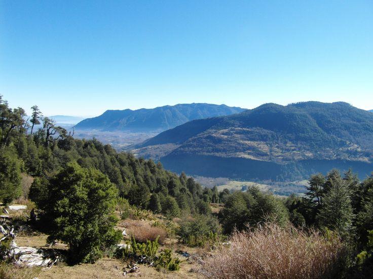 """Eco Hike """"Natural Reserve El Cañi"""""""