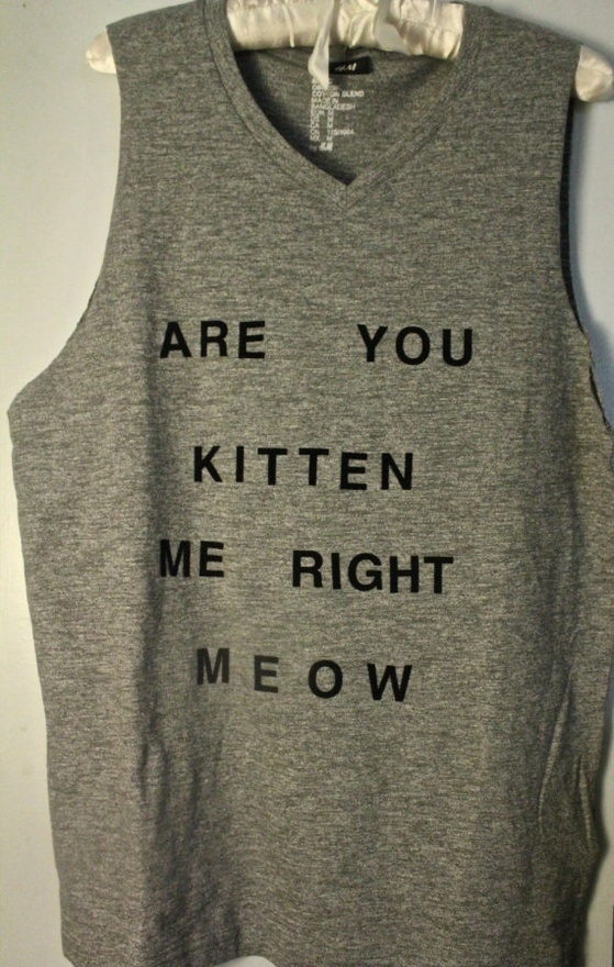@Nicole Romasko @Emily Romasko: Style, Shirts, Funny Clothing, Kittens, Closet, Crazy Cat Lady, Kitty, Cat Lovers, Super Troopers