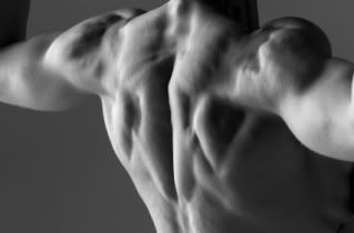 """""""...More than perhaps any other joint in our bodies, the shoulders demand close and careful attention...""""    Read more: http://www.marksdailyapple.com/how-to-maintain-shoulder-mobility-and-scapular-stability/#ixzz2IC3vHAO0"""