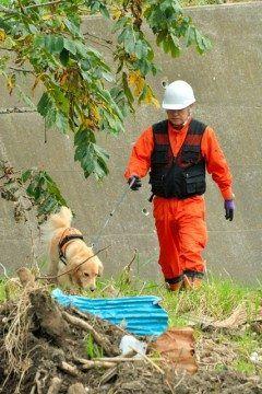 台風号の豪雨災害で女性人が行方不明となっている岩泉町で大槌町の災害救助犬ゆきが活躍したんですって ゆきはゴールデンレトリバーの雌歳で県沿岸にいる唯一の災害救助犬だそうですよ お利口さんなんですね( ) tags[岩手県]